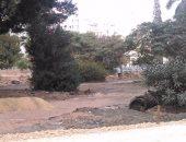 قارئ يشكو التجريف والتخريب المستمر لحديقة المريلاند فى مصر الجديدة