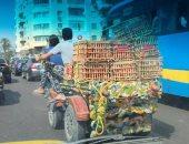 """قارئ يرصد عربة """"كارو"""" تسير أمام مكتبة الإسكندرية وسط غياب مرورى تام"""