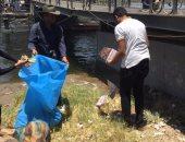 بالصور..سياح أجانب يشاركون المصريين فى حملة لتنظيف نهر النيل