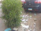 قارئ يناشد المسئولين حل أزمة انتشار القمامة بشارع جوزيف تيتو فى النزهة