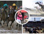 سباقات الخيول فى بالتيمور تخطف أنظار العالم.. والرهان بالملايين