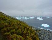 باحثون يطورون نموذجا ذكيا للتنبؤ بما سيحدث لأنتاركتيكا بسبب تغير المناخ