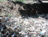"""بالصور.. أهالى """"كفر العرب"""" بالمنوفية يشكون من تراكم القمامة بترعة قريتهم"""
