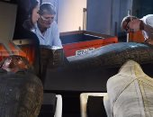 """بالصور.. """"الفراعنة فى الصين"""".. 6 مومياوات و200 قطعة أثرية قديمة بمعرض هونج كونج.. سلسلة معارض تجذب أنظار الصينيين والأجانب.. """"مديرة المتحف"""": يمكن للزوار التعرف على أعمار المومياوات بالمسح الضوئى"""