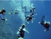 """""""السياحة"""" تفحص تراخيص 50 مركز غوص فى جنوب سيناء"""
