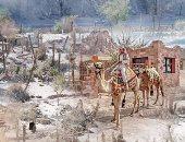 جنوب سيناء.. المسيرة لم تنته.. سكان الوديان حياتهم على الهامش.. نقص المياه المشكلة الكبرى.. إجراءات إثبات الجنسية مطلب جماعى.. ومطالب بزيادة الحافز المادى للموظفين فى المناطق النائية