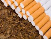 أبحاث علمية لابتكار رئة صناعية من التبغ
