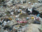 شكوى من انتشار القمامة بشارع الإخلاص فى المريوطية