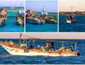 نقيب الصيادين بالسويس: نؤيد وقف التنزه بالخليج وانطلاق الصيد 15 سبتمبر