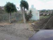 أهالى قرية اللطايفة فى الدقهلية يطالبون بإنارة طريق المقابر.. والمحافظ يرد