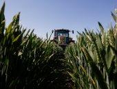 """""""البحوث الزراعية"""" تضع عدة توصيات لمواجهة الموجة الحارة والحشرات الضارة"""