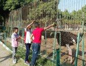 بالصور.. حديقة الحيوان ببنى سويف تستقبل الزوار فى أول أيام العيد