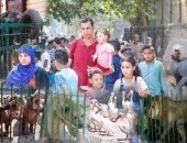 دببة وأسود وفيلة حديقة الجيزة يستقبلون الزوار فى أول أيام عيد الفطر المبارك