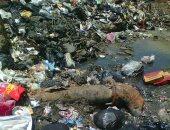 قارئ يشكو انتشار القمامة ومياه الصرف الصحى فى بشتيل بالوراق