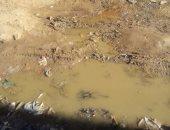 بالصور.. مياه مجهولة المصدر تهدد منازل أهالى قرية مشيرف بالمنوفية