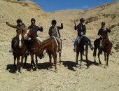 بالصور.. إقبال السياح على سفارى الخيول والجمال بالأقصر