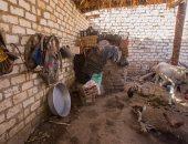 مبادرة حديد المصريين والاستثمار تبدأ إعادة إعمار قرية دندرة بقنا