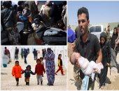 """الكویت تؤكد وجود تنسیق مع """"الدولیة للھجرة"""" للتعامل مع لاجئى سوریا"""