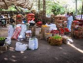 أسعار الخضروات والفاكهة بسوق العبور.. الخيار يبدأ من 3 جنيهات والملوخية بـ2 جنيه
