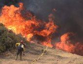 إجلاء ألفى شخص إثر اندلاع حريق غابات فى جزيرة جران كناريا الأسبانية