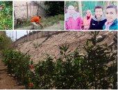 """""""عايزينها تبقى خضرا""""..معلمة تشارك طالباتها فى تحويل مقالب القمامة إلى حدائق"""