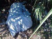 العثور على جثة طفل بعد الإبلاغ عن اختفائه بترعة مجاورة لمنزله بأبو النمرس