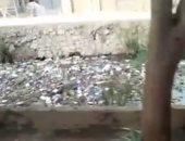 """بالفيديو.. انتشار القمامة والحيوانات النافقة فى ترعة """"سبك التلات"""" بالمنوفية"""