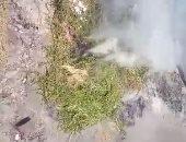 حرق المخلفات البلاستيكية فى باسوس بالقليوبية يؤذى الأهالى
