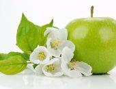فوائد التفاح.. يحمى من الزهايمر ويعالج البواسير ويغذى الشعر