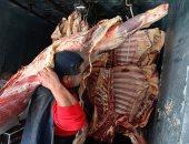 الإحصاء: ارتفاع متوسط سعر اللحوم الحمراء 49 جنيها خلال عام