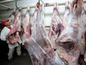تعرف على أسعار الأضحية وأنواع اللحوم خلال العيد من خلال 5 معلومات