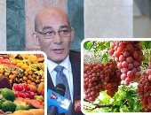 """""""الزراعة"""" حزمة إرشادات فنية لمحاصيل الفاكهة للحد من الإصابة بالأمراض"""