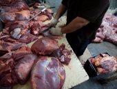 تراجع استيراد اللحوم والأسماك والأبقار الحية خلال أول 7 أشهر من العام