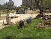 محافظة القاهرة: إنشاء 4 نافورات وشلال بحديقة الميريلاند ضمن خطة تطويرها