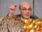 توفر 41 ألف وظيفة.. تفاصيل نقل مزارع دواجن الصعيد للصحراوى بـ1،8 مليار جنيه