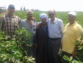 وكيل زراعة الدقهلية يتفقد مساحات القطن ببلقاس وتطهير المجارى المائية