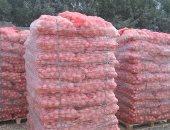 الزراعة: ارتفاع صادرات البصل لـ100 ألف طن وجارٍ  الشحن
