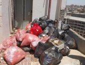 رفع أكثر من 1000 طن مخلفات ذبح وقمامة من شوارع مدينة الأقصر خلال عيد الأضحى المبارك