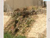 قارئ يشكو من كسر فى ماسورة مياه بإسكان المستقبل بالتجمع الثالث