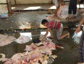 محافظ الشرقية: تحرير 91 محضر  ذبح أضاحى خارج المجازر خلال أيام العيد