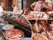"""""""مجمعات الإسكندرية"""": طرح 8 أطنان أسماك يوميًا بأسعار مخفضة"""