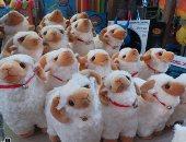 بركات صفا: 7 أنواع من لعبة خروف العيد وأسعارها جملة تتراوح من 40 إلى 250 جنيه