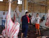 """بالصور.. """"بيطرى كفر الشيخ:"""": ذبح 540 رأس ماشية فى 19 مجزرا ونقطة ذبح"""