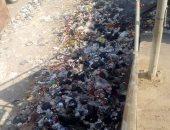 مستثمر: ننتج الكهرباء من القمامة ونجحنا فى بيعها للدولة فى 2016
