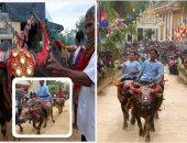 """على ظهر """"الجاموس"""" الكمبوديين يختمون مهرجان تكريم الموتى"""