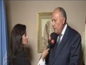 وزير الخارجية يتسلم دعوة لحضور السيسي قمة منتدى الدول المصدرة للغاز