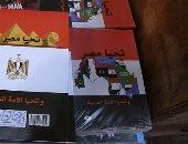 "بالصور.. انتشار كشاكيل ""تحيا مصر"" بمحلات وسط البلد"