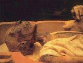 لماذا لم يتم ذكر اسم نبى الله موسى على الآثار المصرية؟..  أثرى يجيب