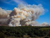فرق الإطفاء تحرز تقدما فى مكافحة حريق غابات بشمال كاليفورنيا