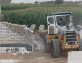 إزالة 10حالات تعدى على الأراضى الزراعية فى الإسكندرية